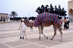 Tunisia-1984
