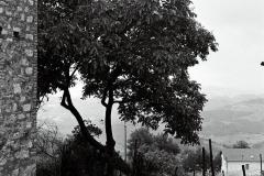 photo17_6